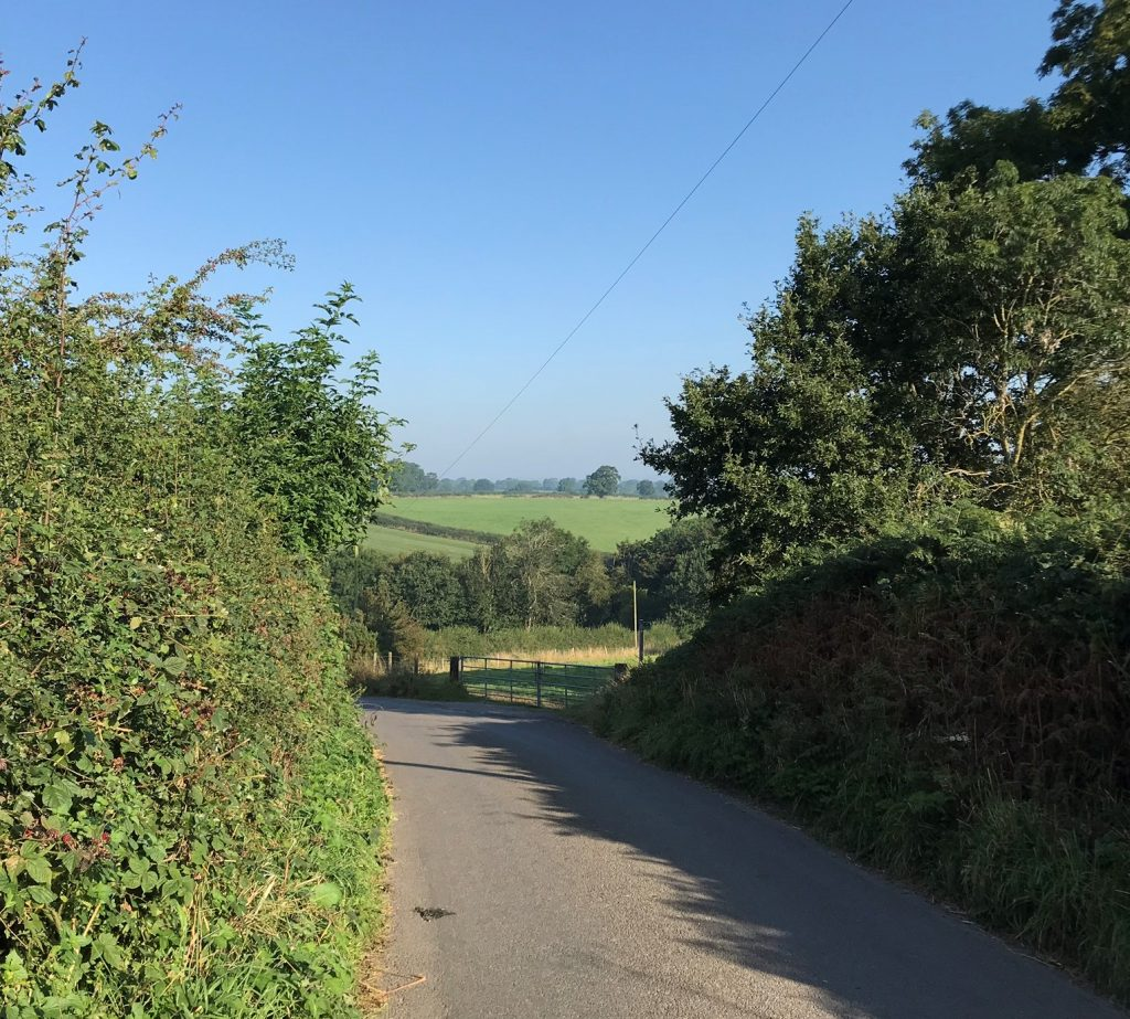 Derbyshire cycling hedgerow