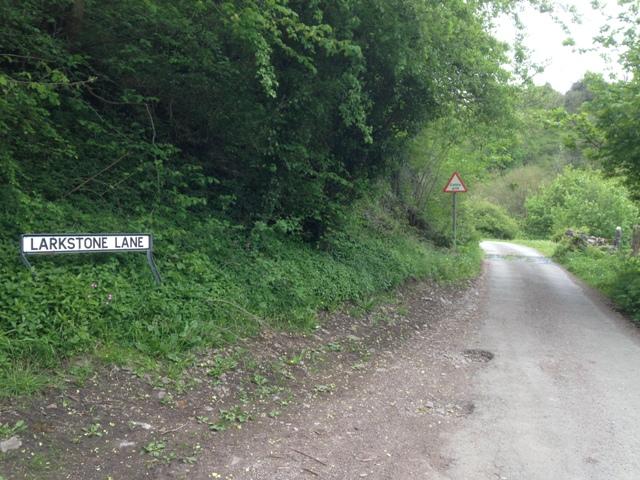 Larkstone Lane start of the climb
